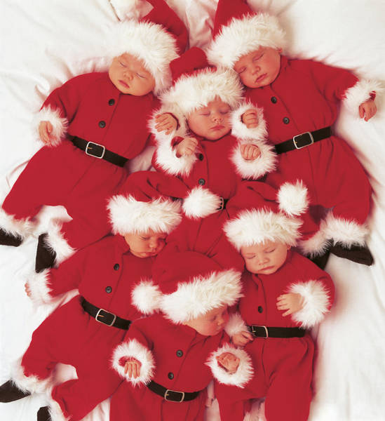 Holiday Wall Art - Photograph - Sleepy Santas by Anne Geddes