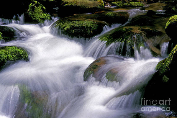 Photograph - Smoky Mtn Stream by Paul W Faust - Impressions of Light