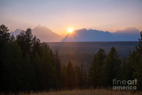 Moose Art Photograph - Snake River Sunset  by Michael Ver Sprill