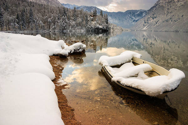 Wall Art - Photograph - Snow Covered Boat On Lake Bohinj In Winter by Ian Middleton