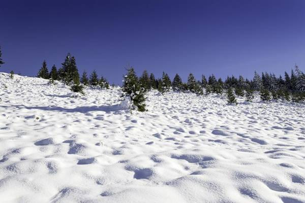 Wall Art - Photograph - Snow by FL collection