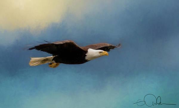 Digital Art - Soaring Eagle by Gloria Anderson