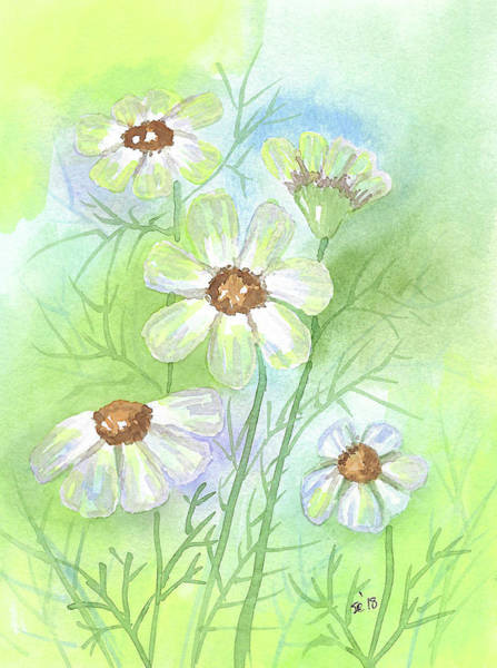 Painting - Softness by Susan Campbell