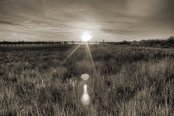 Photograph - Sol Legare Sunset by Dustin K Ryan