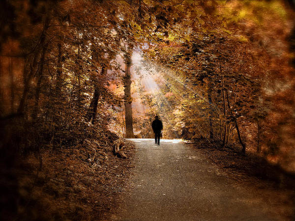 Strolling Photograph - Solitary Stroll by Jessica Jenney