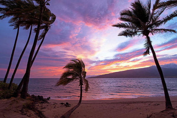 Kihei Photograph - Solitude by James Roemmling