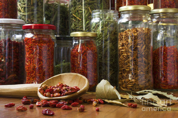 Herbs Photograph - Spicy Still Life by Carlos Caetano