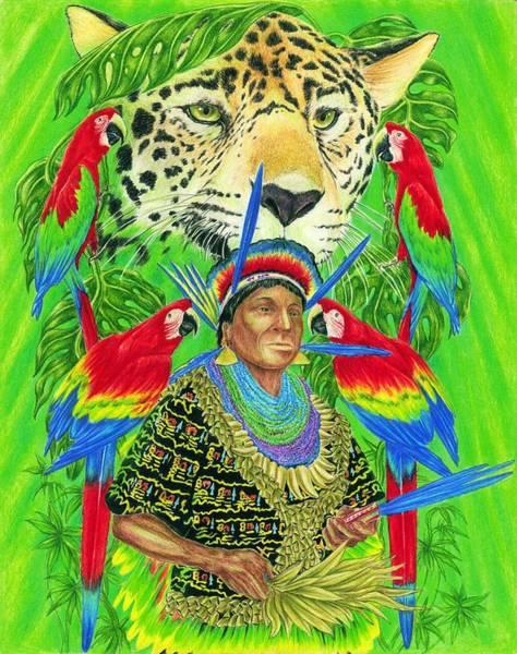 Blue Parrot Drawing - Spirit Of The Jaguar by Tim McCarthy