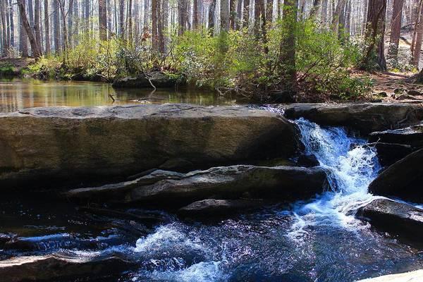 Wall Art - Photograph - Spring Falls by Kevin Wheeler