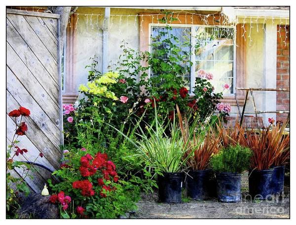 Photograph - Spring Garden by Leslie Hunziker
