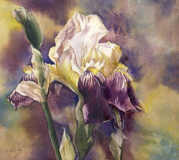 Painting - Spring Iris by Alfred Ng