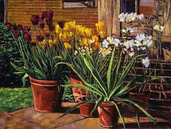 Wall Art - Painting - Spring Tulips And White Azaleas by David Lloyd Glover