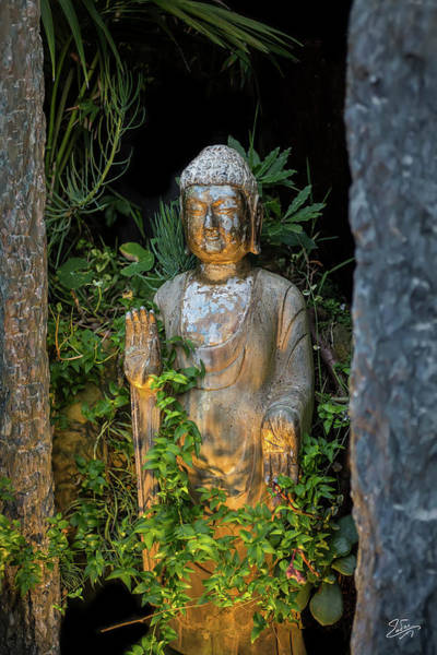 Photograph - Standing Buddha 4 by Endre Balogh