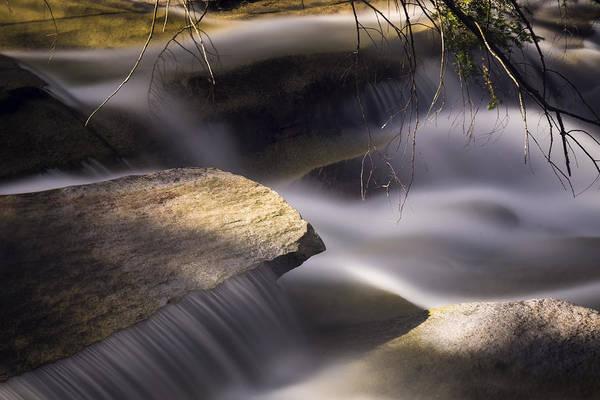Photograph - Stickney Brook IIi by Tom Singleton