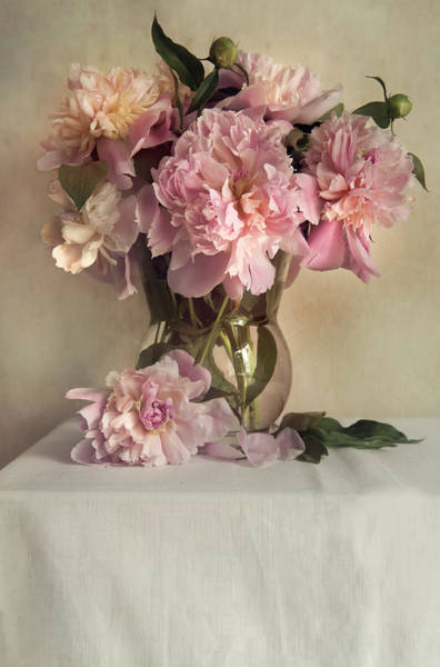 Wall Art - Photograph - Still Life With Pink Peonies by Jaroslaw Blaminsky