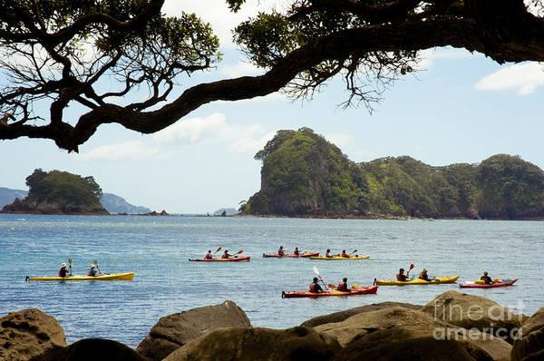 Pohutukawa Photograph - Stingray Cove, Kayakers Paddling by Himani - Printscapes