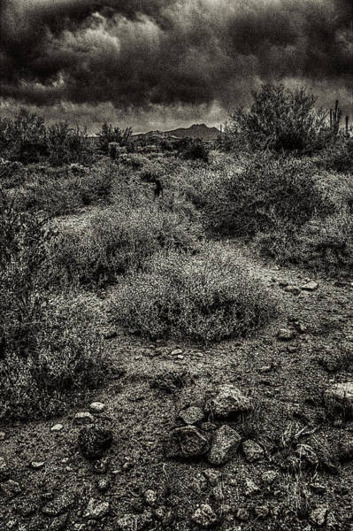 Photograph - Storm Clouds Over The Sonoran Desert In Spring by Roger Passman