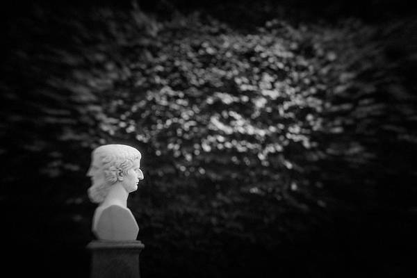 Photograph - St.petersburg #042 by Andrey Godyaykin