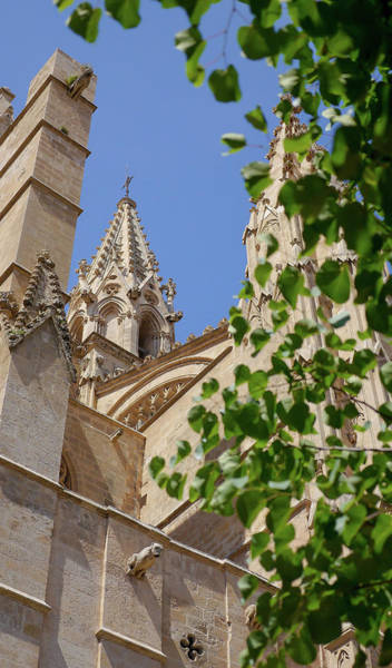 Photograph - Street Spires by Herb Paynter