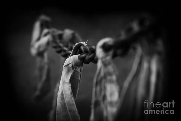 Photograph - Strength by Sharon Mau