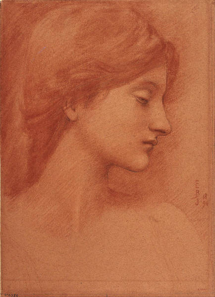 Painting - Study Of A Female Head by Edward Burne-Jones