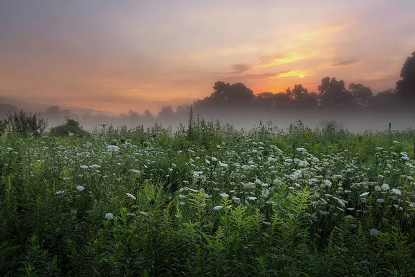 Photograph - Summer Sunrise by Bill Wakeley