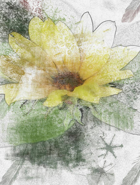 Digital Art - Sunflower Canvas by Richard Ricci