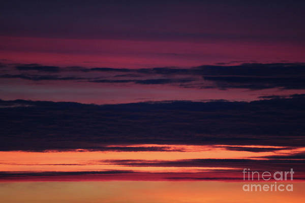 Photograph - Sunrise by Donna L Munro