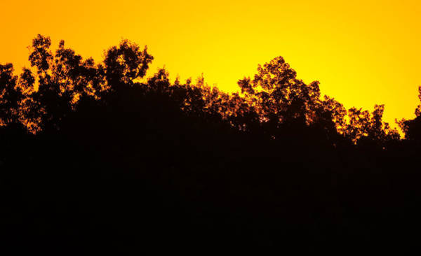 Photograph - Sunrise Silhouette by Dan Sproul