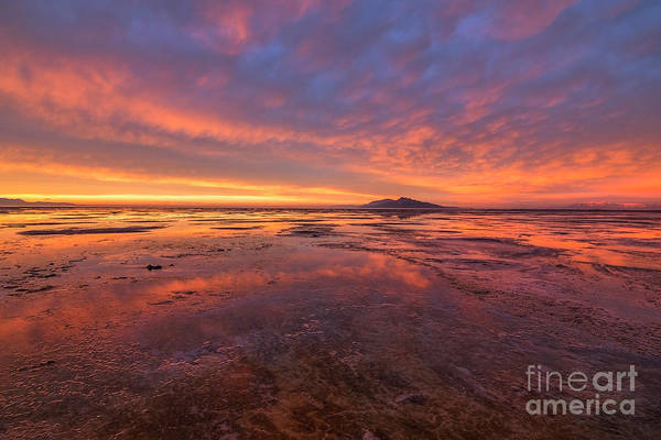 Photograph - Sunset At The Great Salt Lake by Spencer Baugh