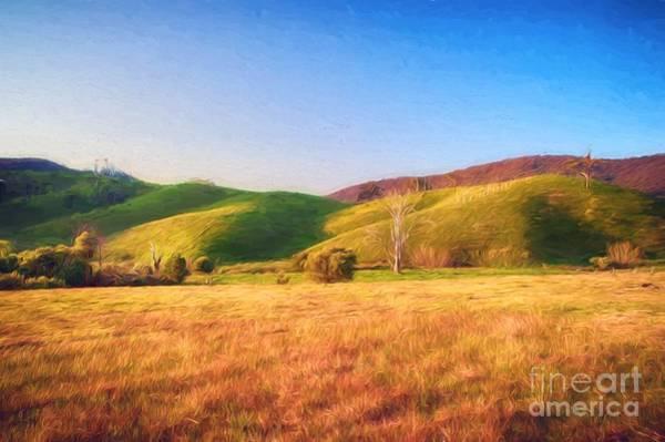 Photograph - Sunset Field       Vg by Ray Warren