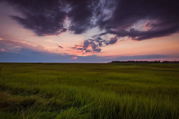 Photograph - Sunset Marsh by Alissa Beth Photography