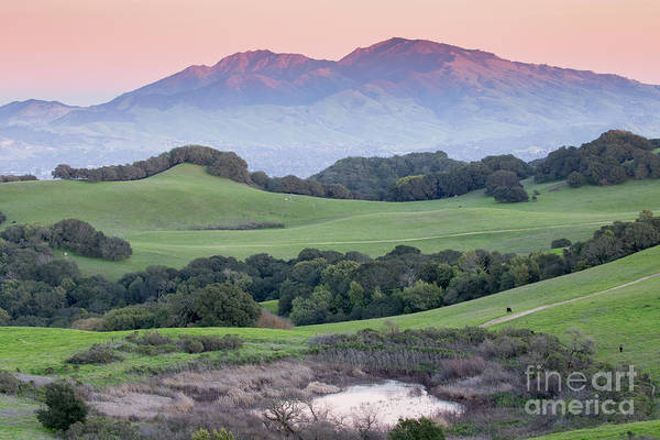 Mt. Diablo Wall Art - Photograph - Sunset Over Mt Diablo From Rolling Grassy Hills Of Briones Regional Park by Yuval Helfman
