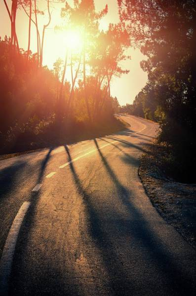 Winding Roads Photograph - Sunset Road by Carlos Caetano