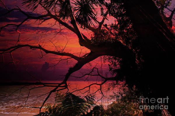 Photograph - Sunset Series 9497 by Carlos Diaz