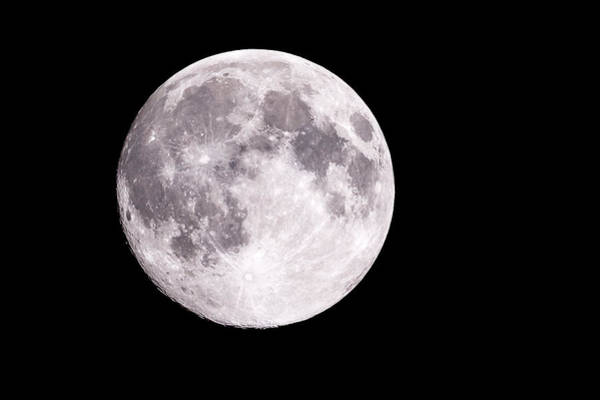 Photograph - Super Moon  by Jack R Perry