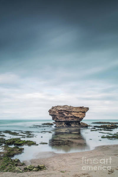 Wall Art - Photograph - Surrender To The Sea by Evelina Kremsdorf