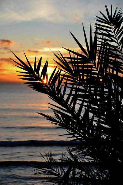 Wall Art - Photograph - Swamis Sunset by Kelly Wade