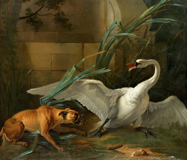 Elegant Dog Painting - Swan Attacked By A Dog by Jean-Baptiste Oudry