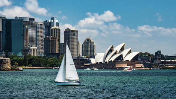 Photograph - Sydney Harbor by Walt Sterneman