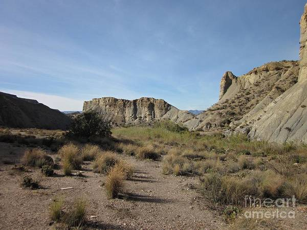 Photograph - Tabernas Desert by Chani Demuijlder