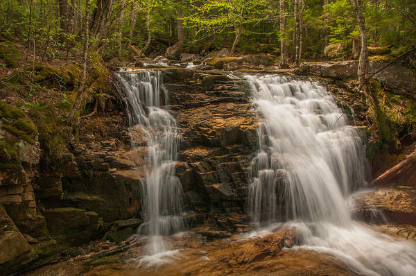 Photograph - Tama Falls  by Brenda Jacobs