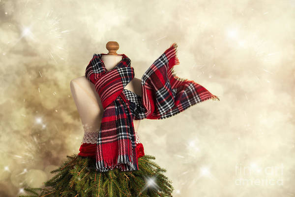 Dress Form Photograph - Tartan Scarf by Amanda Elwell