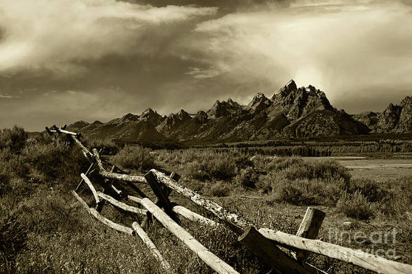 Wall Art - Photograph - Tetons And Fence by Timothy Johnson