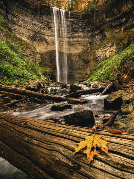 Wall Art - Photograph - Tews Falls by Cale Best