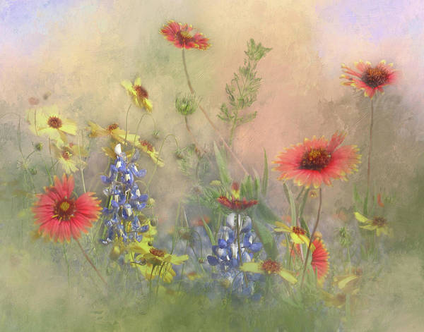 Wall Art - Photograph - Texas Wildflowers by David and Carol Kelly