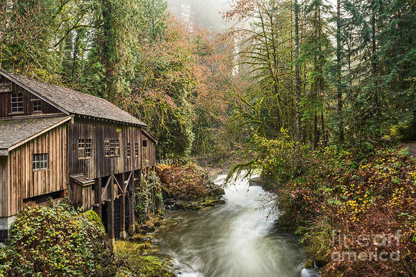 Grist Mill Photograph - The Cedar Creek Grist Mill In Washington State. by Jamie Pham