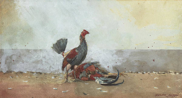 1885 Wall Art - Painting - The Cock Fight by Winslow Homer