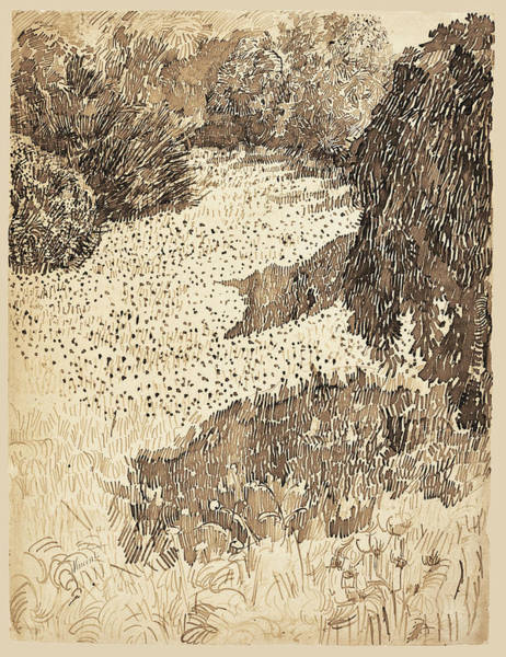 Beautiful Park Drawing - The Corner Of The Park by Vincent van Gogh