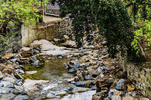 Photograph - The Creek by William Norton
